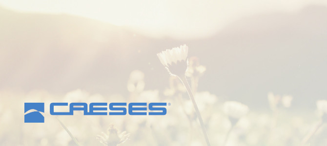 Released CAESES 4.4.2